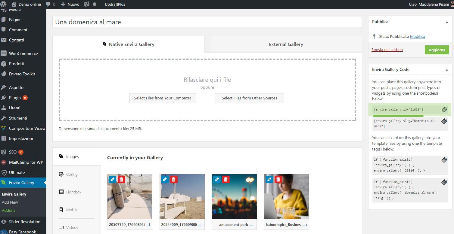Crea gallery in WordPress con Envira Gallery